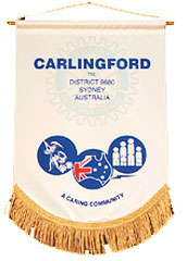 Club of Carlingford Banner
